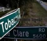 nikotinos alapok